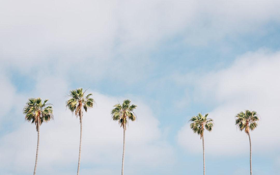 Top 10 Free Summer Activities In Ocean Beach